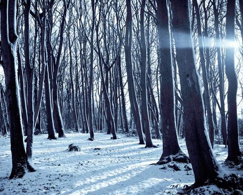 esqui-y-nieve-el-colladito
